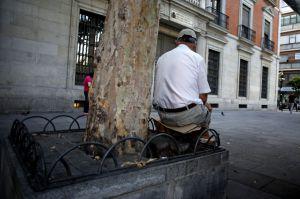 En la plaza de Jacinto Benavente no hay bancos, frente a más de 200 sillas de terrazas de pago.