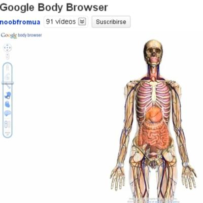 Nueva herramienta de Google para conocer el cuerpo humano.