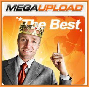 Google defiende a Megaupload