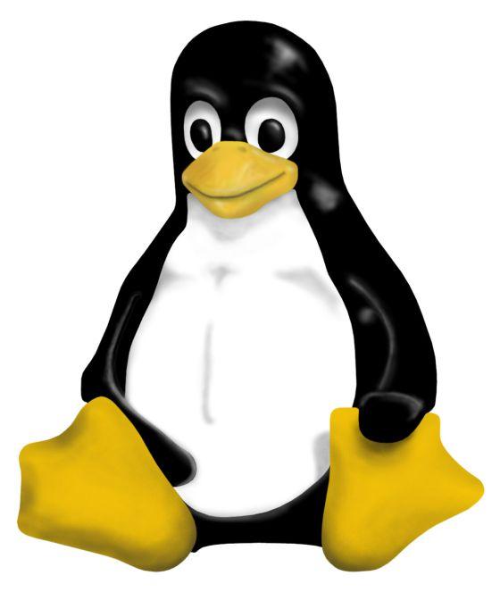 El pingüino, símbolo de Linux.