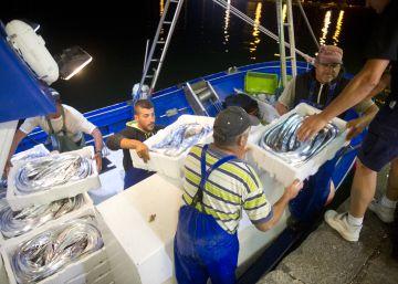 Greenpeace lanza una 'app' para identificar el pescado de temporada