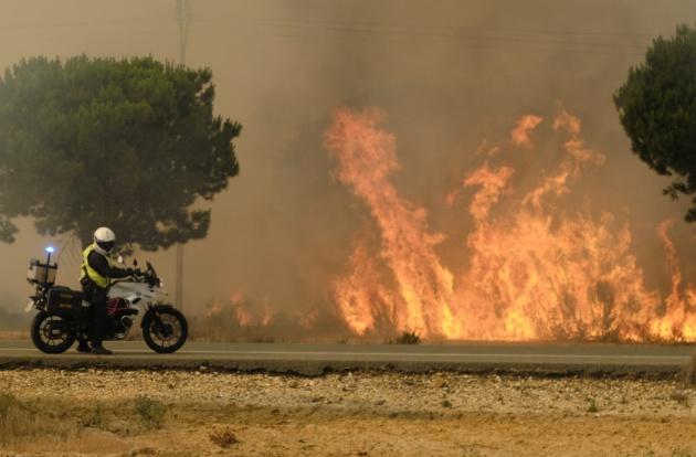 Llamas en los alrededores de Mazagón, en Huelva. El incendio se ha acercado al Espacio Natural de Doñana
