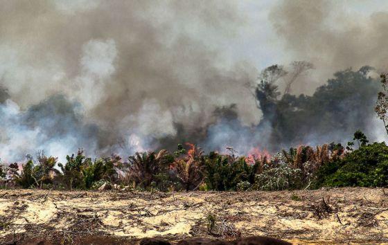 Ilha do Xingu queimando para dar lugar à Belo Monte.