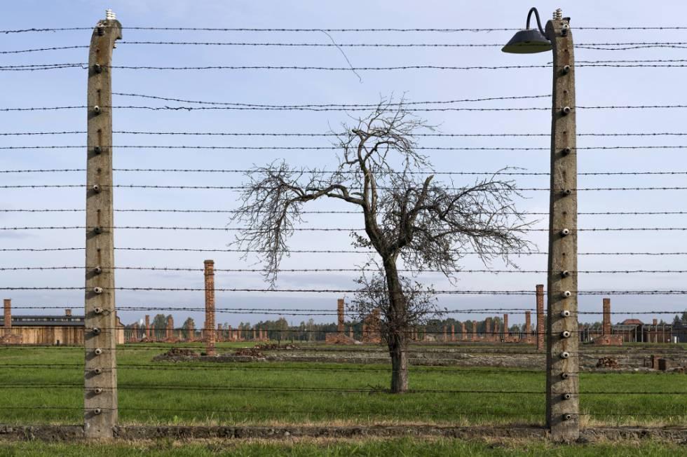 Auschwitz: a luta para preservar a memória do horror