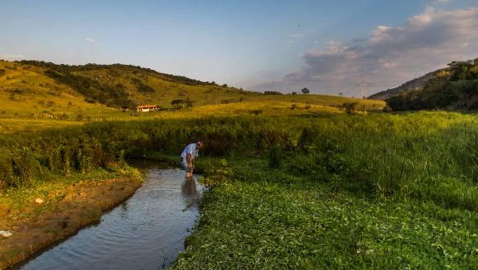 Brasileiros não sabem se tem agrotóxicos na água que bebem