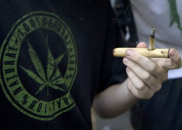Demanda de maconha legal no Uruguai é maior do que a oferta