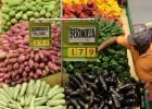 """Médicos e MPF tentam barrar lei ruralista sobre agrotóxicos apelidada de """"pacote de veneno"""""""
