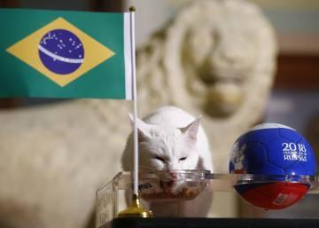brasil x costa rica onde assistir ao jogo pela copa do