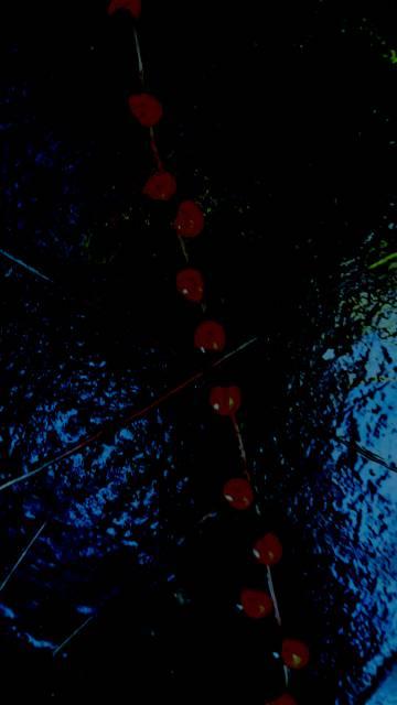 Trabalho de Ricardo Aleixo feito em técnica mista (madeira pintada, sementes de olho-de-pombo e fotografia digital), que tenta ressaltar a ideia de movimento associada a Exu.