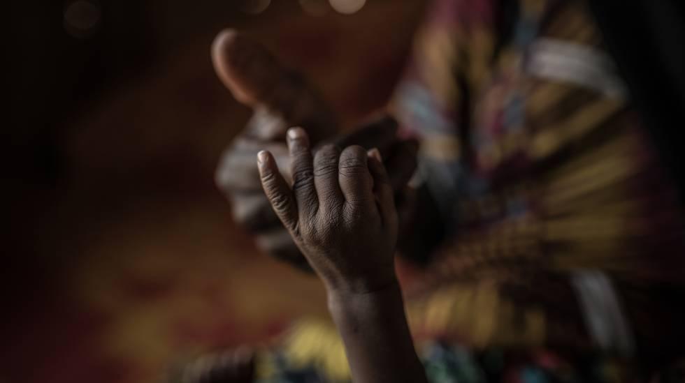 Relatório FAO fome no mundo