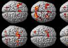 Somos capazes de criar novos neurônios em qualquer idade com um simples exercício (que está em suas mãos)