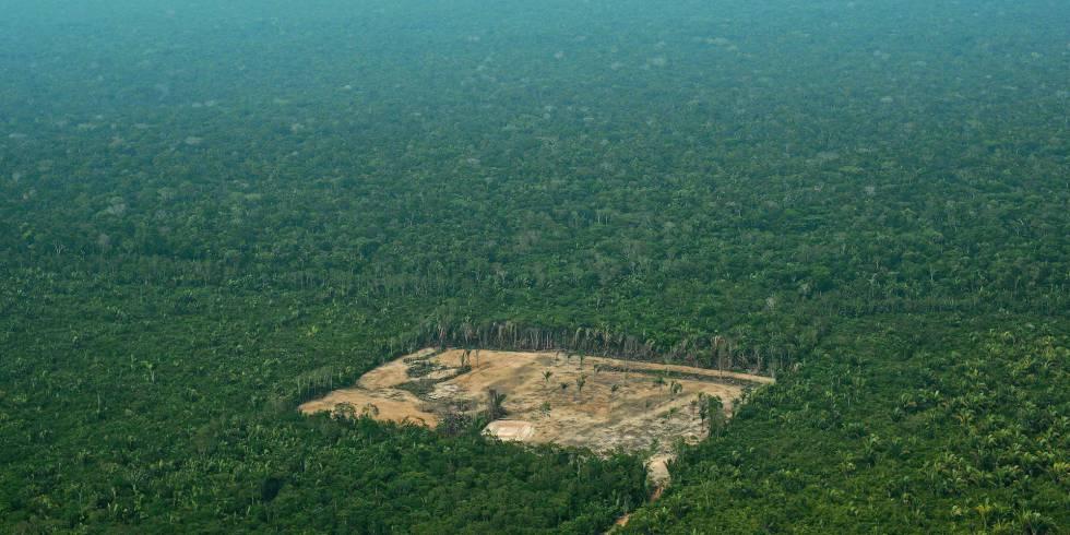 Bolsonaro quer entregar a Amazônia