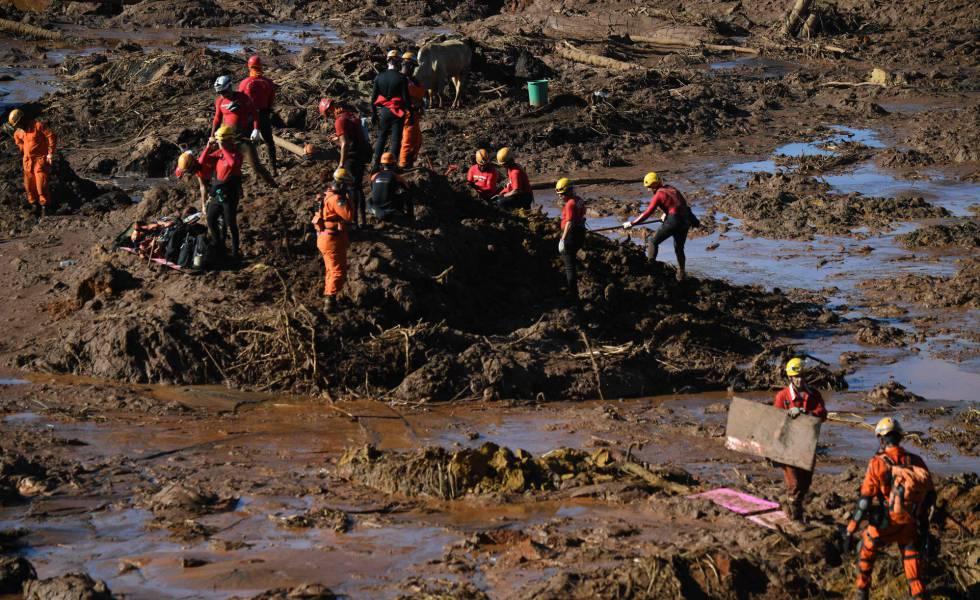 AO VIVO | Brumadinho: as últimas notícias sobre o rompimento de barragem da Vale