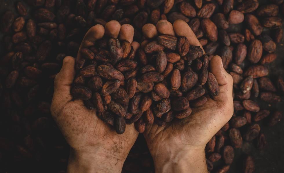 Quanto seu chocolate encareceria sem trabalho infantil?