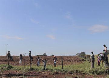O calvário das crianças Guarani Kaiowá contaminadas por agrotóxicos