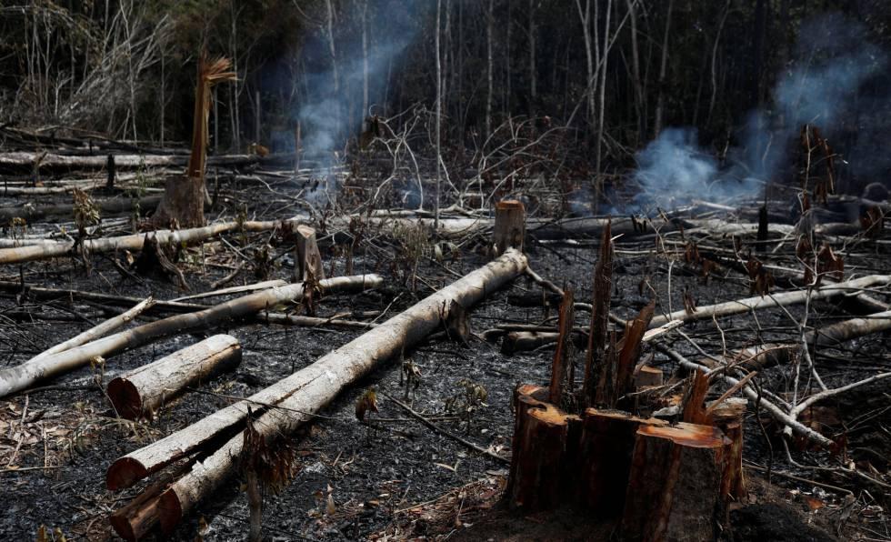 Região da Amazônia brasileira depois dos incêndios.