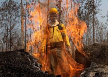 81% dos brasileiros são contra garimpo e desmatamento