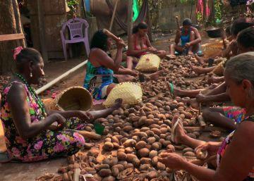 'Vozes da Floresta', o documentário que revela as muitas crises do Brasil