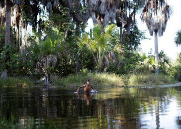 Sob Bolsonaro, dobra o número de terras indígenas invadidas