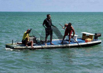 Governo Bolsonaro ignora técnicos e diz que limpeza do óleo é suficiente para liberar praias