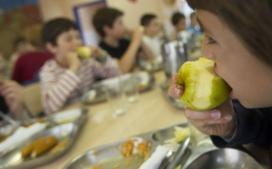 Terrassa suspende la adjudicaci n a serhs de los comedores escolares catalu a el pa s - Comedores escolares barcelona ...