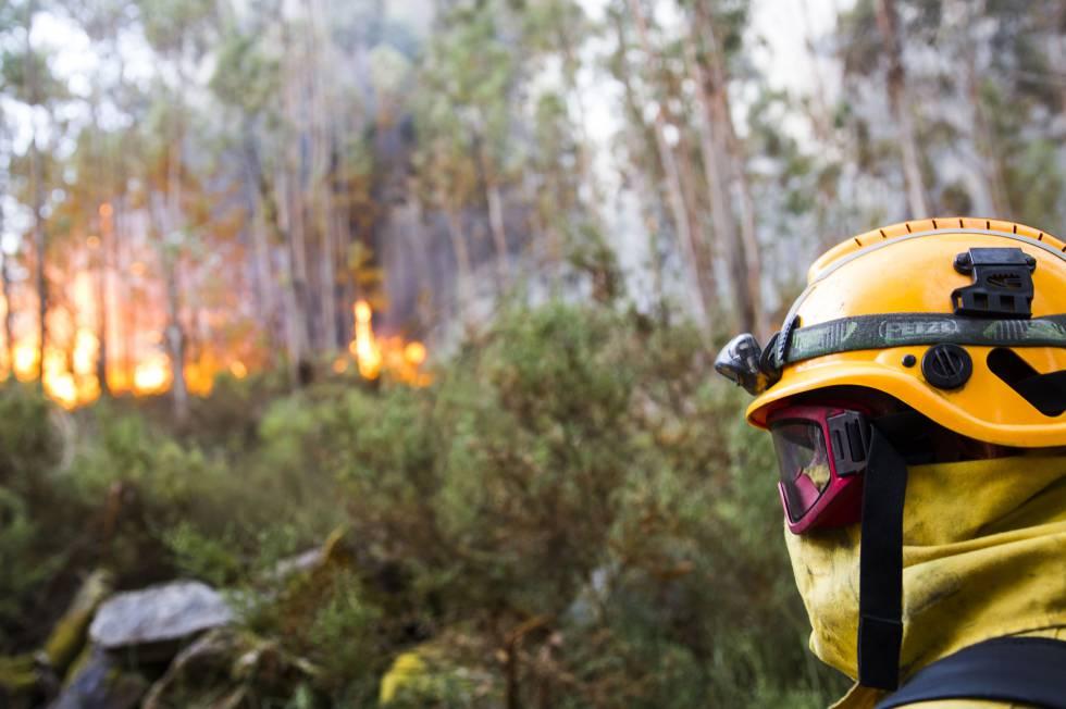 Un brigadista durante un incendio forestal en Galicia el verano pasado.