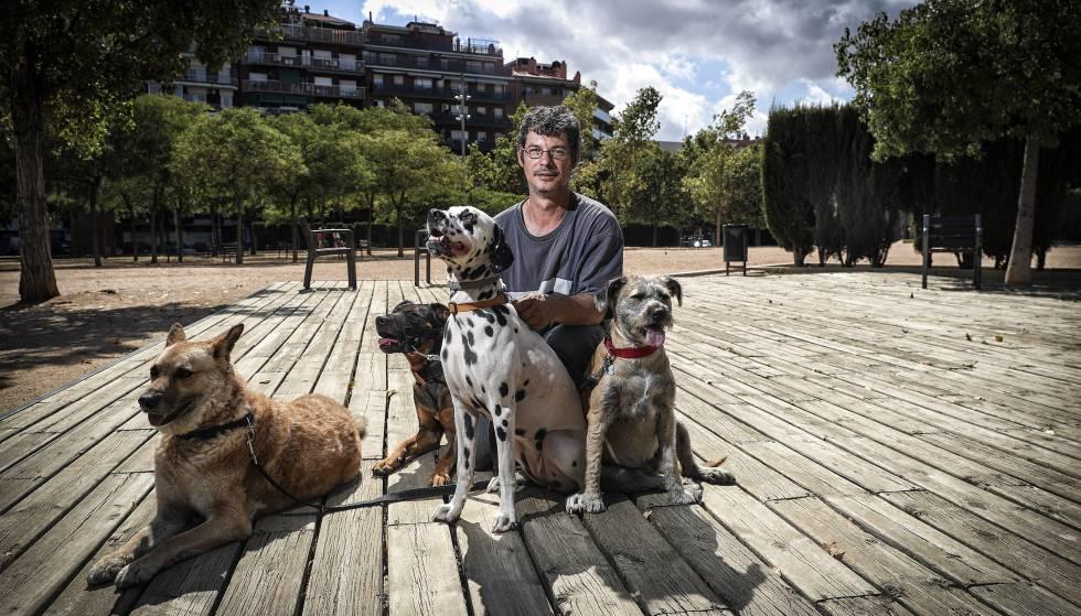 Prefiero la compa a de los perros a la de las personas for Trabajo jardinero barcelona