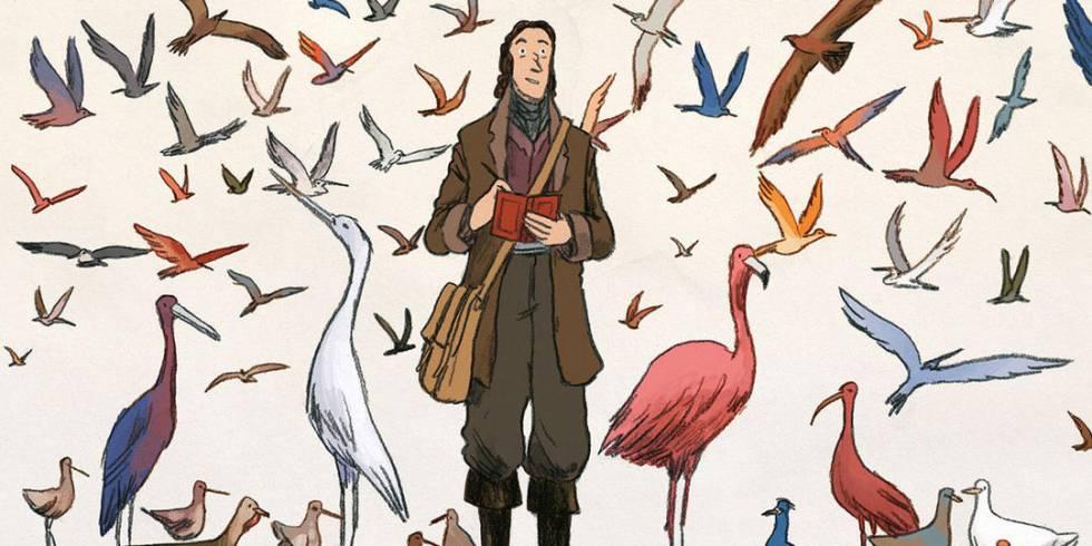 Una ilustración de 'Sobre las alas del mundo, Audubon' (Norma Editorial)