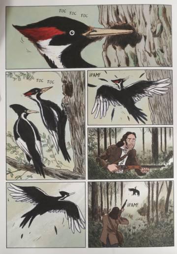 Una página de 'Sobre las alas del mundo, Audubon'.