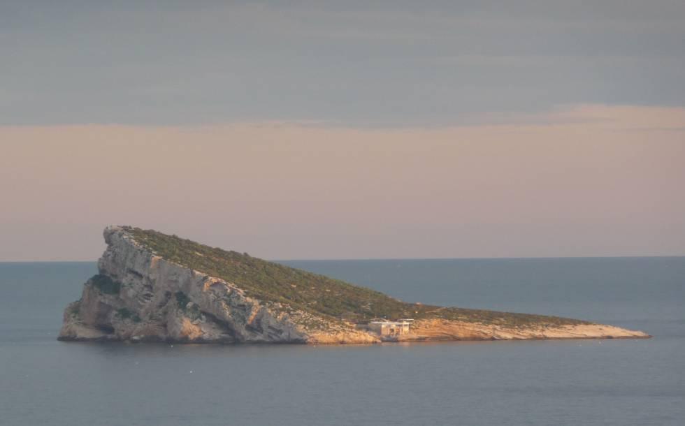 El oso polar cerco al pol mico restaurante de la isla de benidorm - Restaurante el puerto benidorm ...