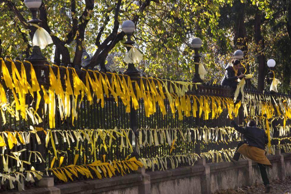 Resultado de imagen de lazos amarillos cataluña