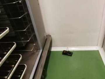 Trampa para ratas que han colocado los trabajadores de la cocina del hospital Gregorio Marañón.