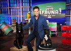 Pet TV talent show comes under fire from rights groups