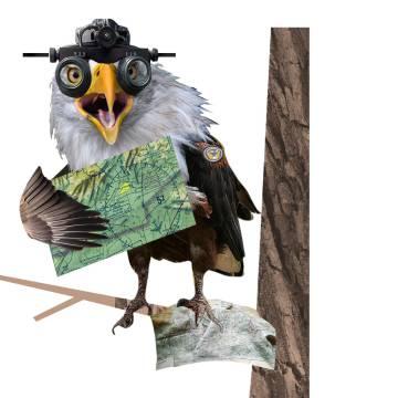 El águila, uno de los pájaros del libro 'Aviario'.