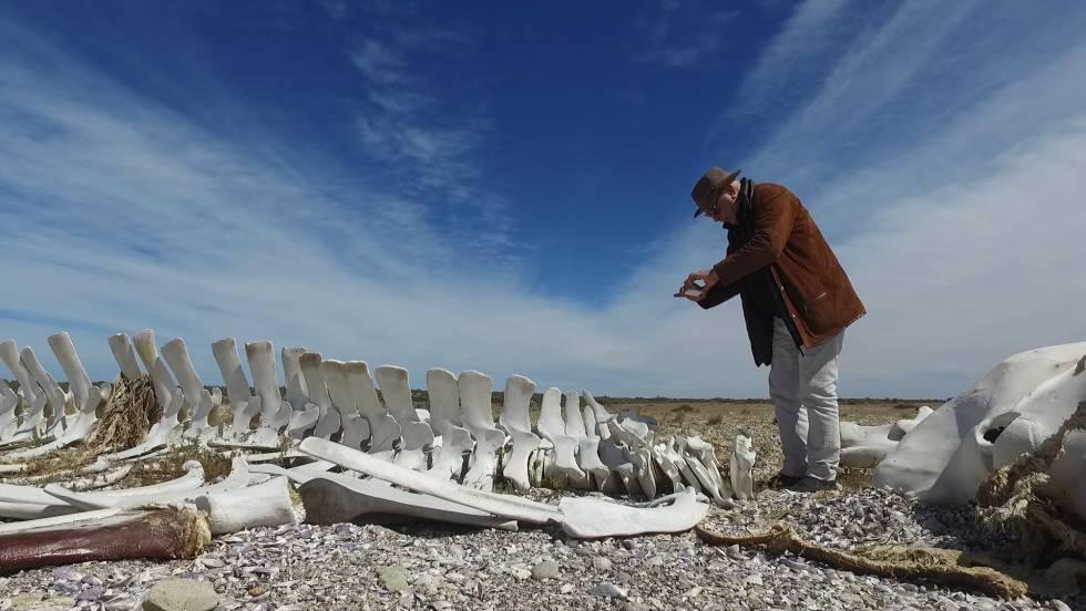El artista francés Christian Boltanski, una de las estrellas invitadas a Bienalsur