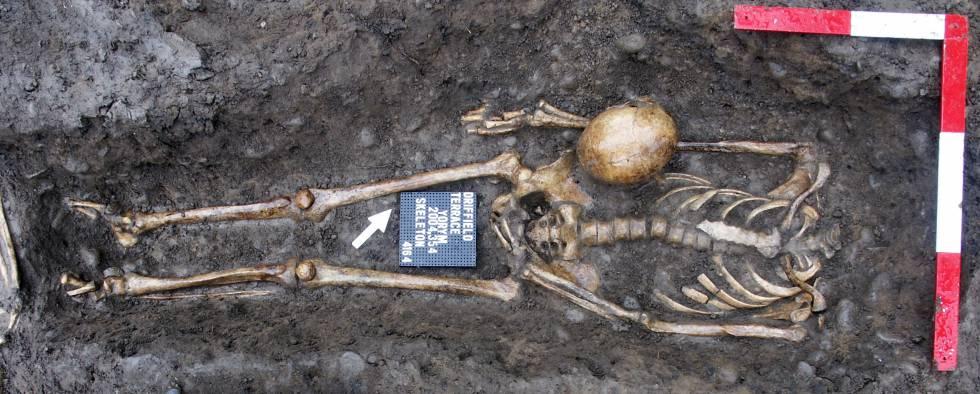 Esqueleto de un hombre decapitado de época romana excavado en Driffield Terrace, York, en 2004