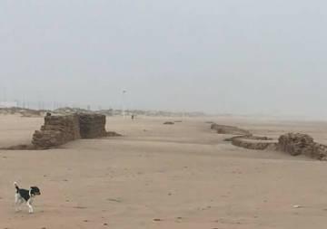 Restos en la playa de Cortadura (Adip).