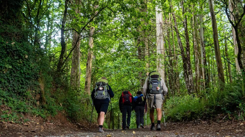 35740fe47729d Peregrinos recorriendo el Camino de Santiago desde St Jean Pied du Port  (Francia) a
