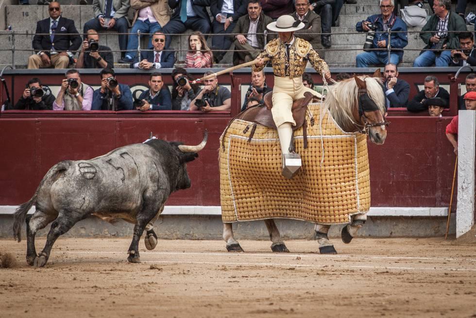'Vibillo', ejemplar de Saltillo, lidiado el pasado 4 de junio en Las Ventas.