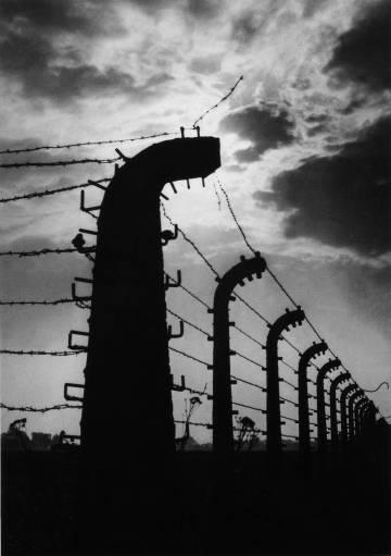 Valla electrificada del campo de concentración de Auschwitz.