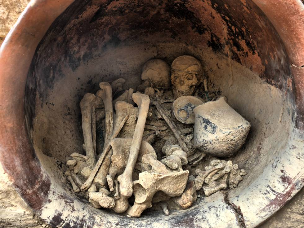 """Resultado de imagen de museo del argar almeria"""""""
