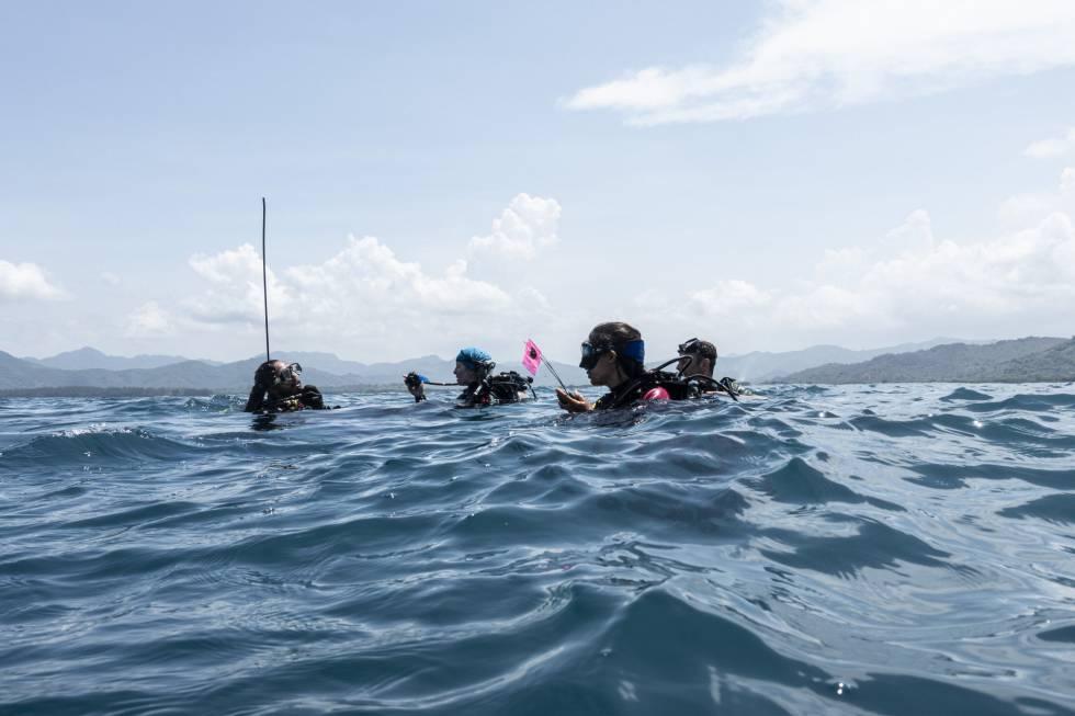 Arquéologos en la bahía de Villa Rica, durante la búsqueda de los barcos de Cortés.