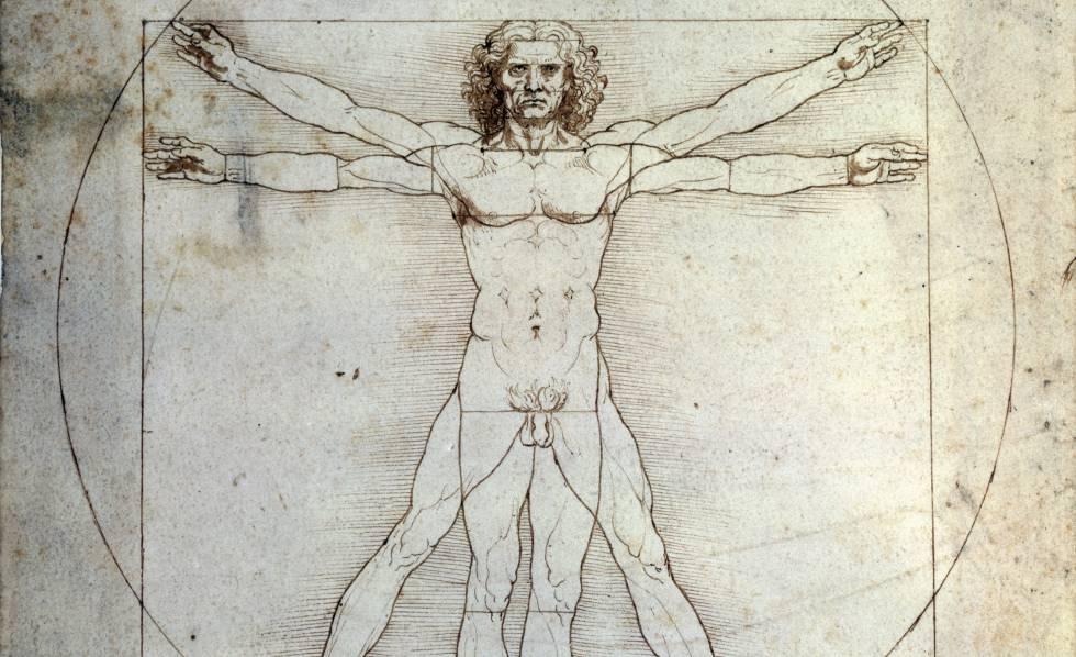 Hombre de Vitruvio': Leonardo entorpece el deshielo entre Francia ...