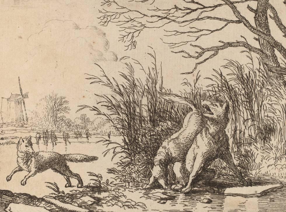 'Wolves on Ice', by Allart van Everdingen (1645).