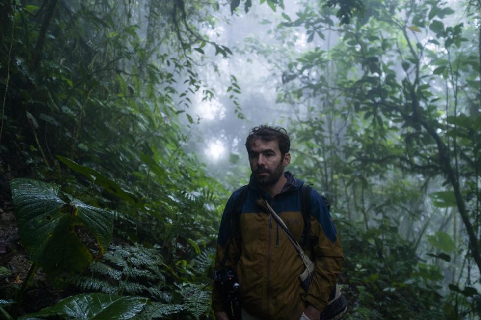 El camino a ninguna parte del puente abandonado en la selva amazónica