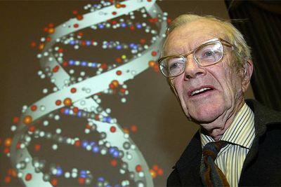 Maurice Wilkins El Físico Que Verificó La Estructura Del