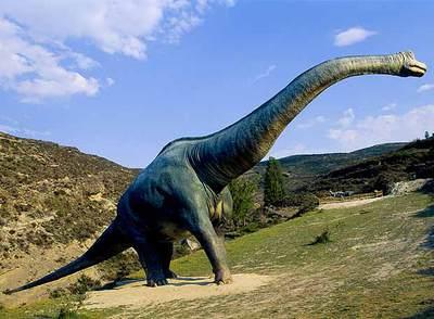Nombre y foto de los dinosaurios 70