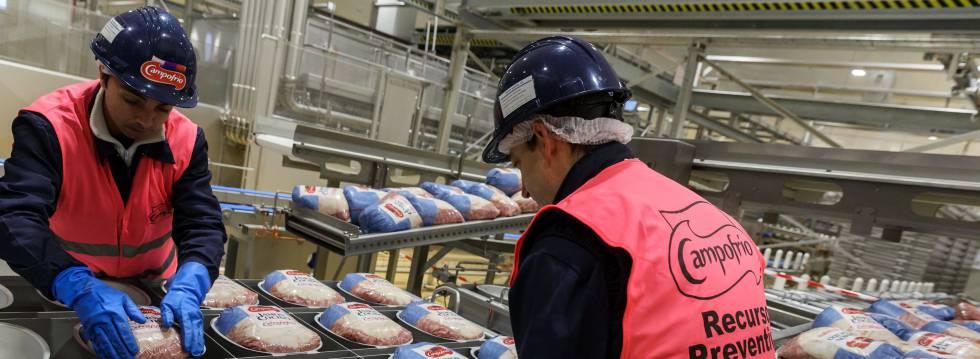 Empaquetado de jamones en la fábrica de Campofrío (propiedad del grupo Sigma) en Burgos.