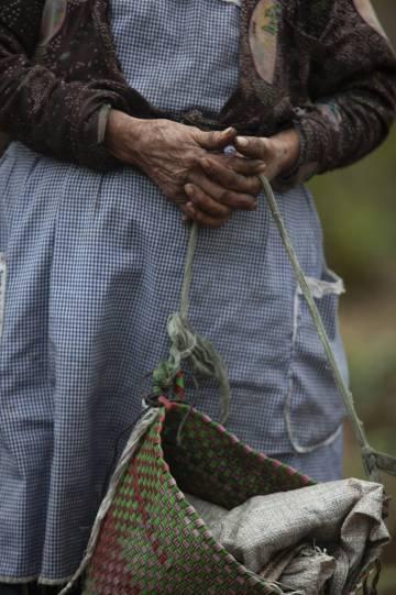 Una jornalera en Coatepec.