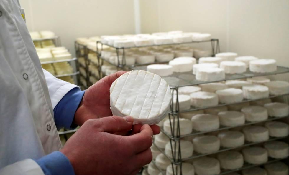Un productor de Bermonville (Francia) muestra un Camembert elaborado con leche cruda.